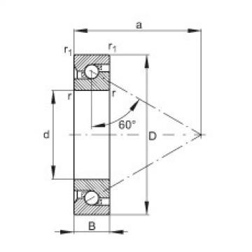 Axial angular contact ball bearings - 7603050-TVP
