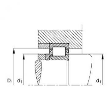 Cylindrical roller bearings - NJ203-E-XL-TVP2 + HJ203-E