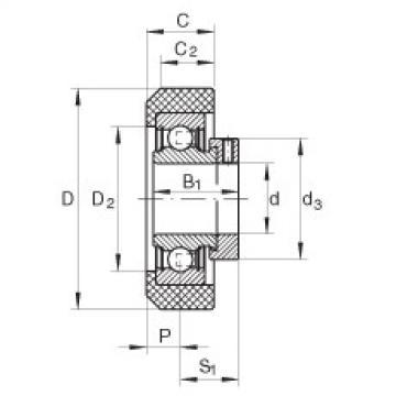 Radial insert ball bearings - RCRA20/46-XL-FA106
