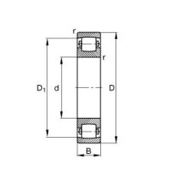 Barrel roller bearings - 20217-MB