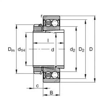 Self-aligning ball bearings - 2205-K-2RS-TVH-C3 + H305