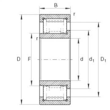 Cylindrical roller bearings - ZSL192319-TB-XL