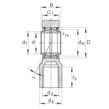 Hydraulic rod ends - GIHNRK100-LO