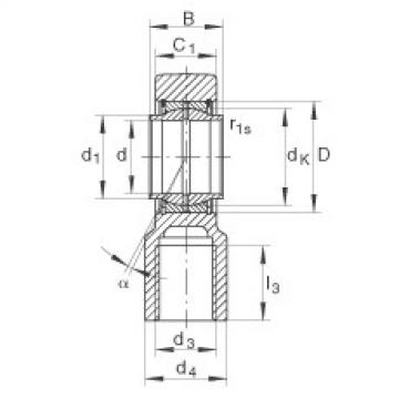 Hydraulic rod ends - GIHNRK70-LO