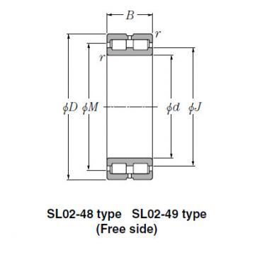 Bearing SL02-4836