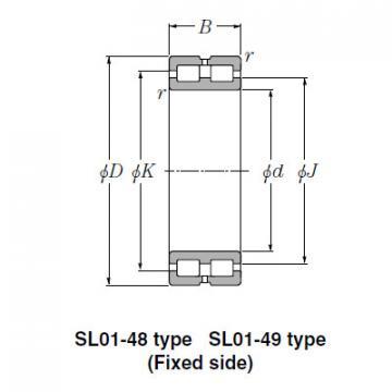 Bearing SL02-4930