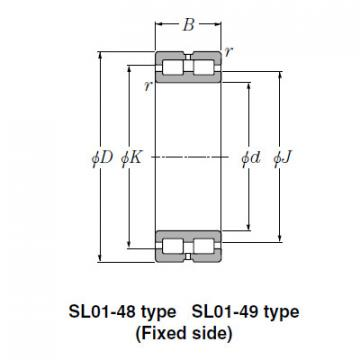 Bearing SL02-4972