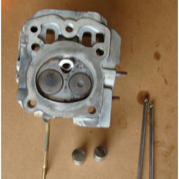 Kohler Pro CV16S 16HP OHV Engine Head, Valves, 2 Guide Rods, 2 Cam Followers