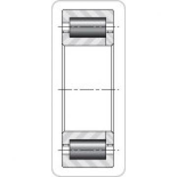 Timken NUP29/710M