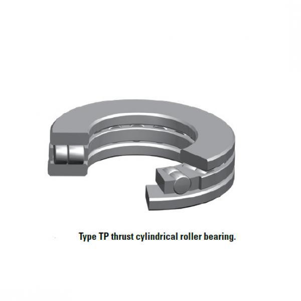 Bearing 40TP117