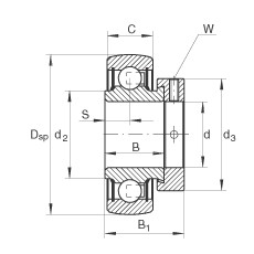 Radial insert ball bearings - RALE20-XL-NPP-B