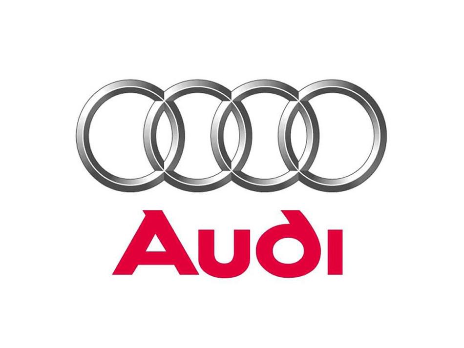 Audi 058109309F Engine Camshaft Follower/Cam Follower