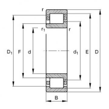 Cylindrical roller bearings - NJ317-E-XL-TVP2