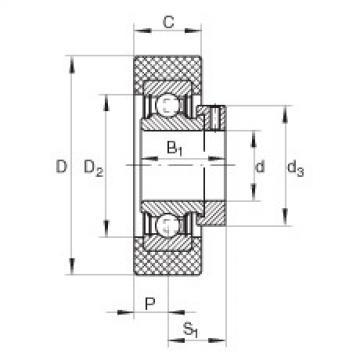 Radial insert ball bearings - RCSMB20/65-XL-FA106