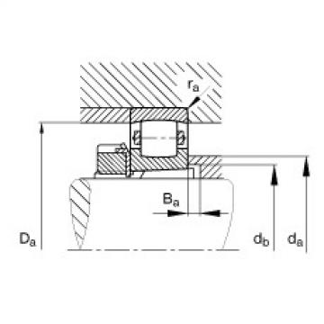 Barrel roller bearings - 20206-K-TVP-C3 + H206