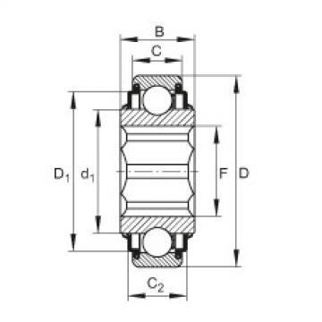 Self-aligning deep groove ball bearings - SK100-206-KRR-AH11