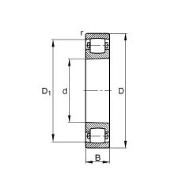 Barrel roller bearings - 20205-K-TVP-C3