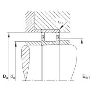Cylindrical roller bearings - N1017-K-M1-SP