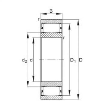 Toroidal roller bearings - C2219-XL