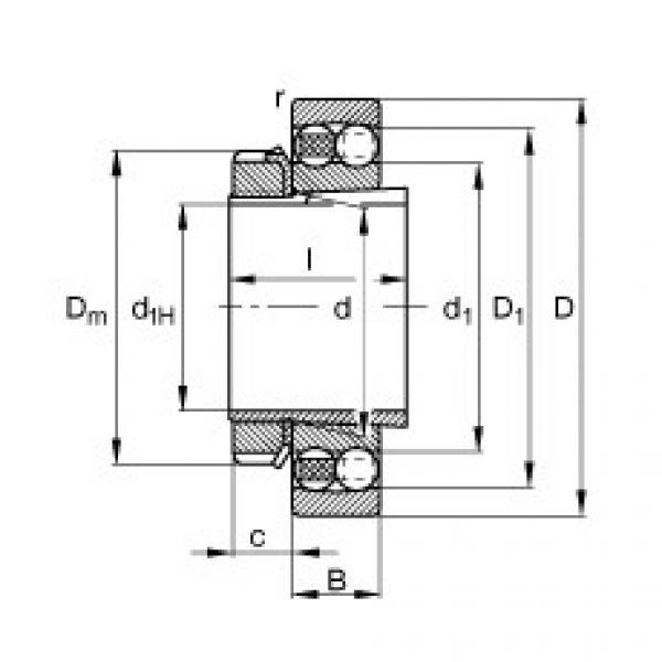 Self-aligning ball bearings - 1205-K-TVH-C3 + H205 #1 image