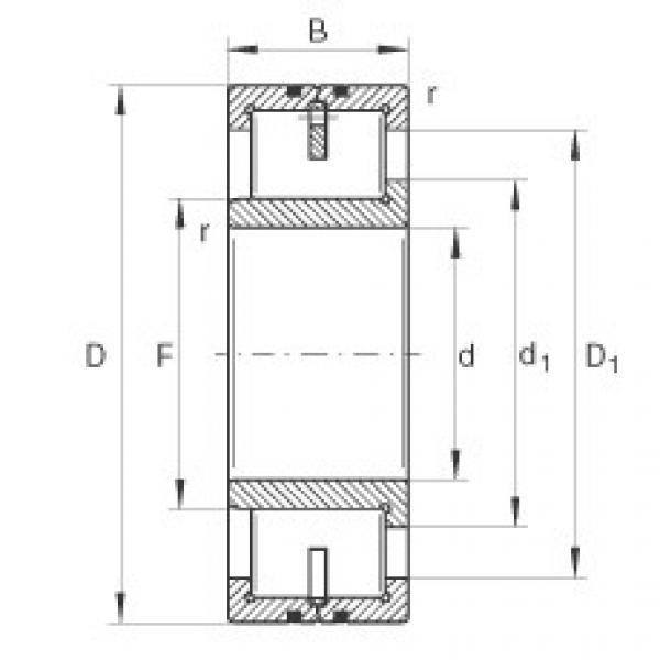 Cylindrical roller bearings - LSL192360-TB #1 image