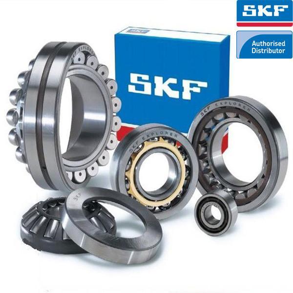 SKF Bearing Distributor in Singapore #1 image