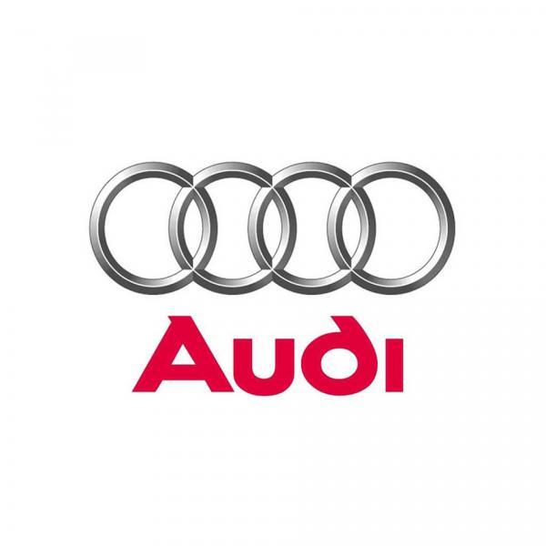 Audi 058109309F Engine Camshaft Follower/Cam Follower #1 image